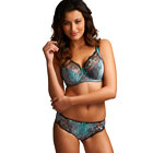 Fantasie Nicola Teal brief
