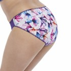 Elomi Morgan Pruple Lily brief