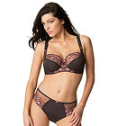 Fantasie Kara lace brief